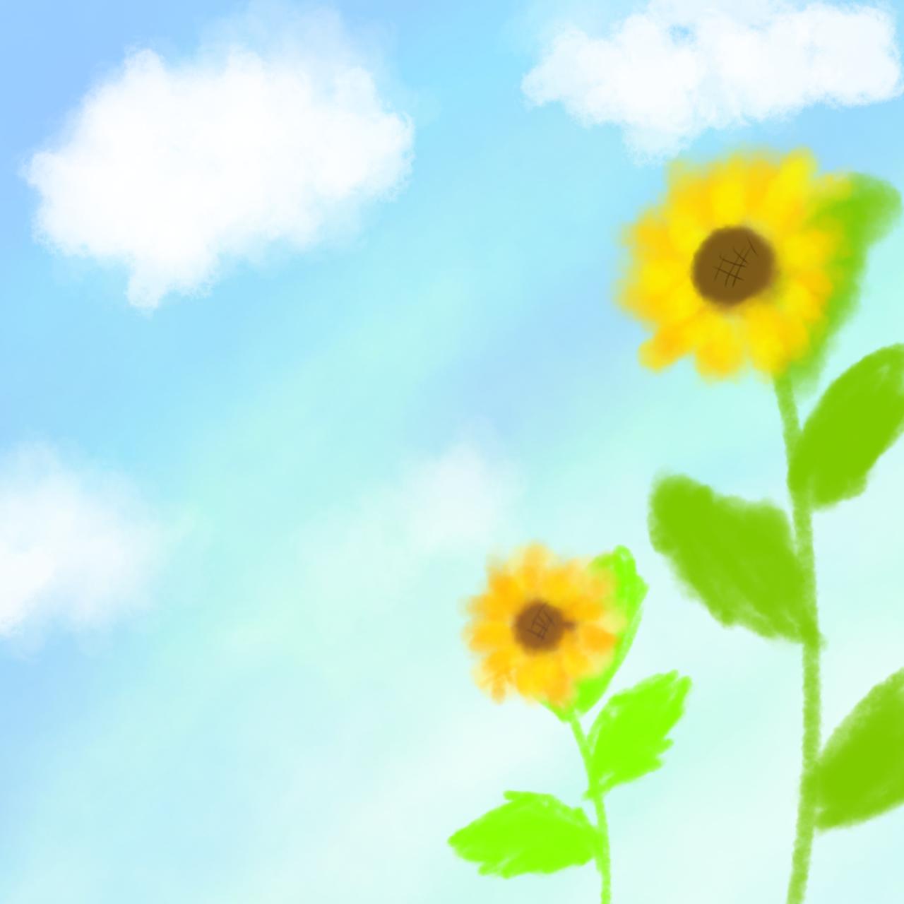 風に揺れる向日葵
