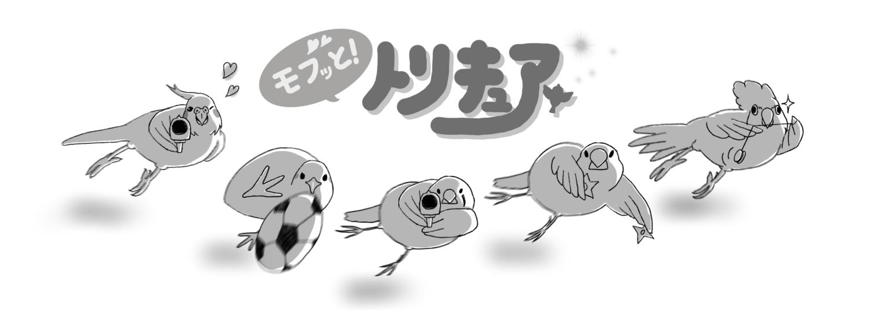 モフッと!トリキュアシリーズ