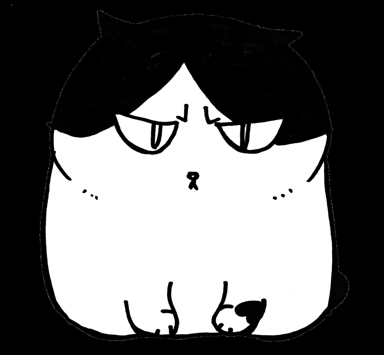 ふしぎ猫 コムちん