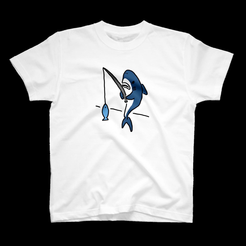 日々のサメ