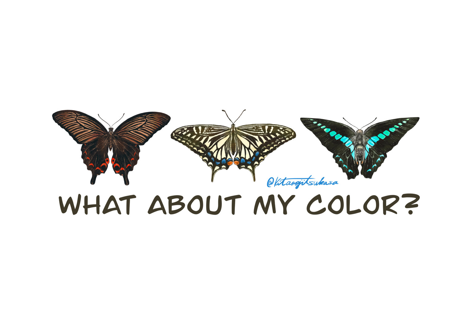WHAT ABOUT MY COLOR?シリーズ
