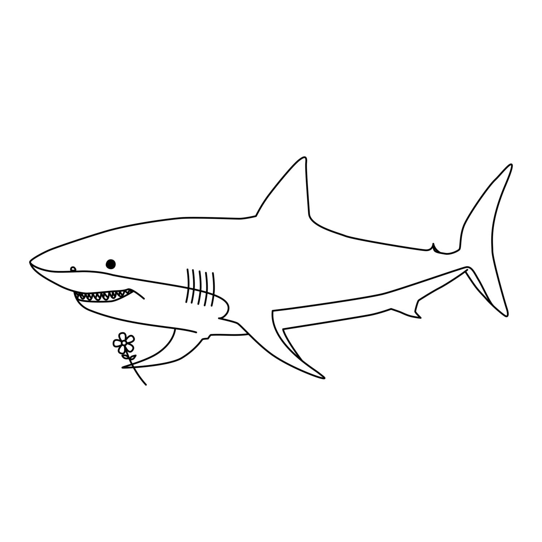 優しいサメ
