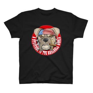 【愛甲猛チャリティー 第2弾】「球界の野良犬」シリーズ