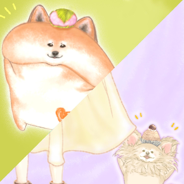 🐶どるちぇ*わんこ①(チワワ&柴犬)🐶