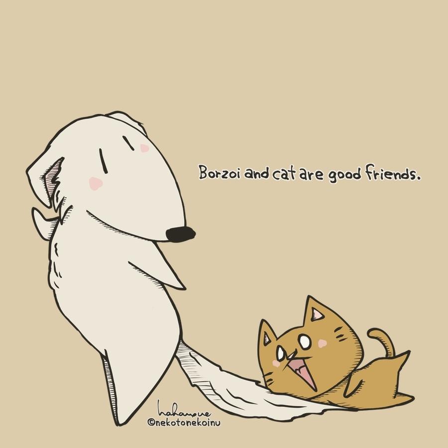 ボルゾイと猫(Borzoi&Cat)