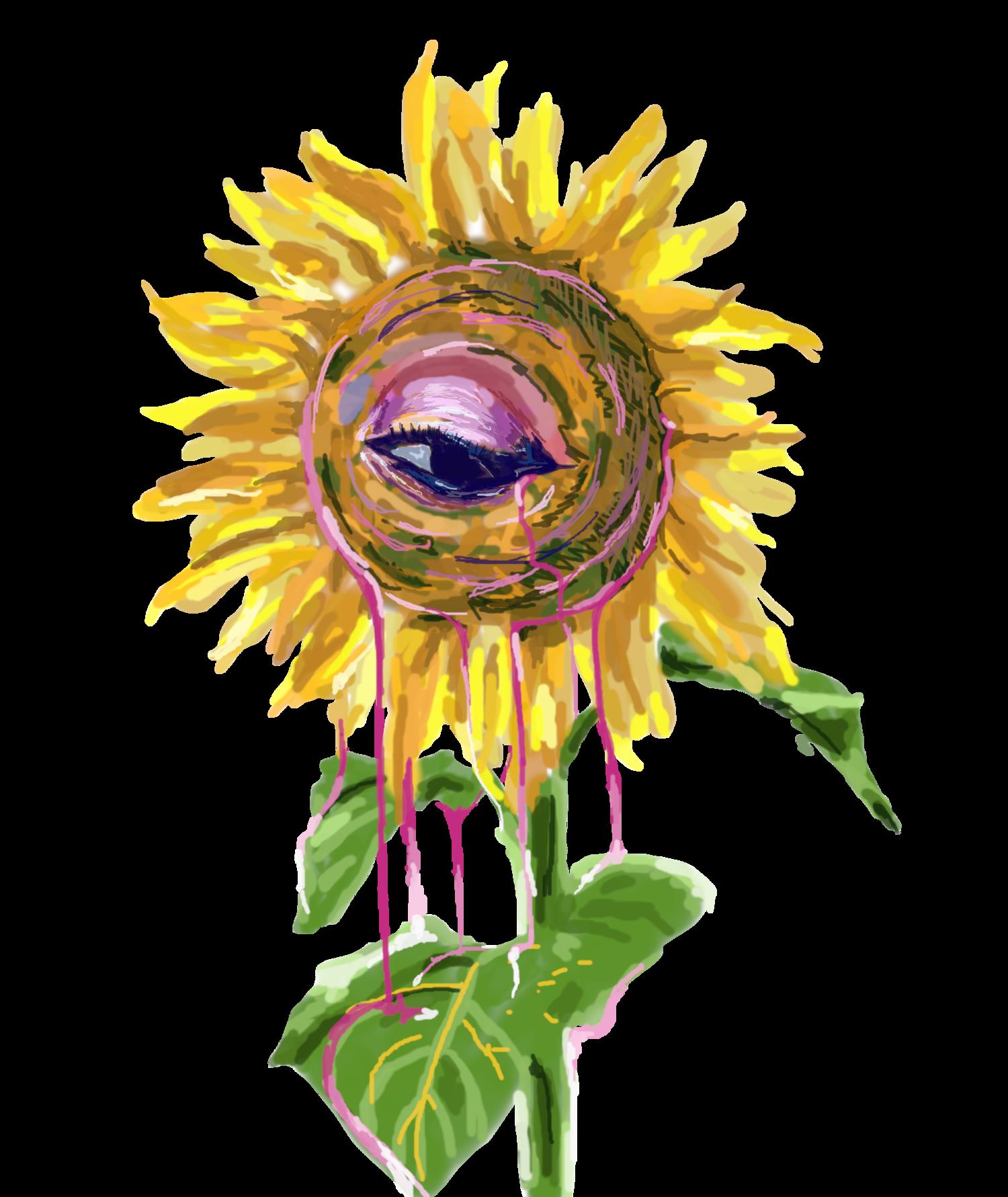 illSunflower
