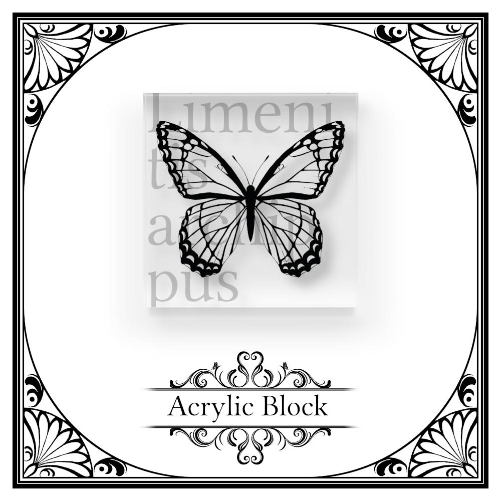 蝶のアクリルブロック