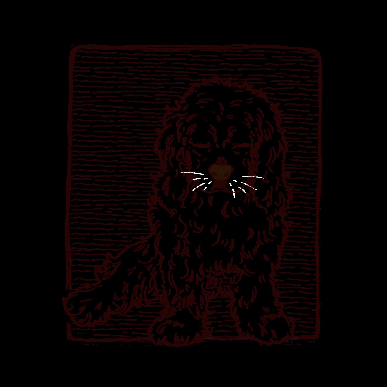 わんこ(犬)