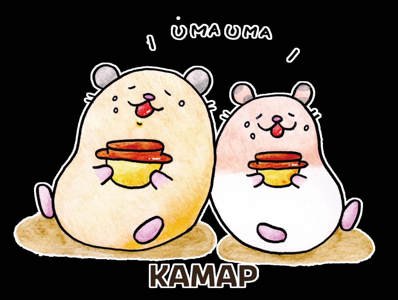 KAMAP(poco)