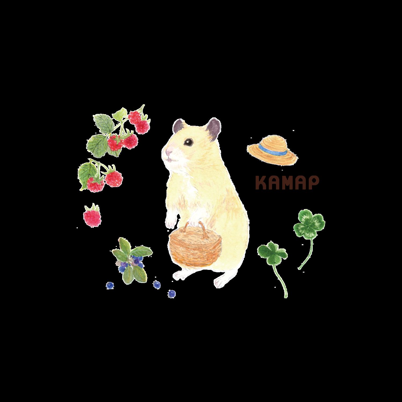 KAMAP(Chieko)