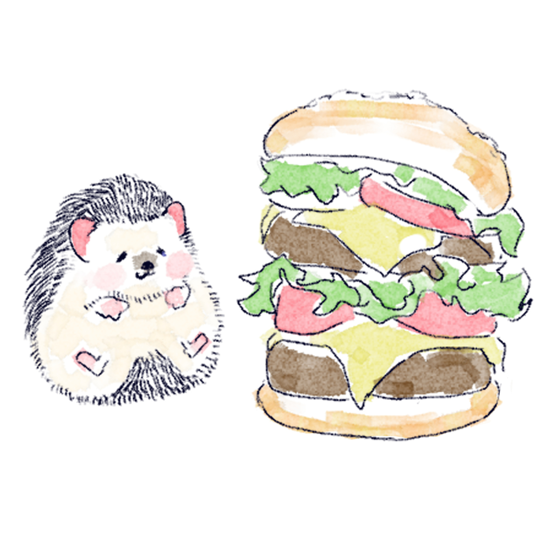 ハンバーガーを食べるハリネズミのソフィー