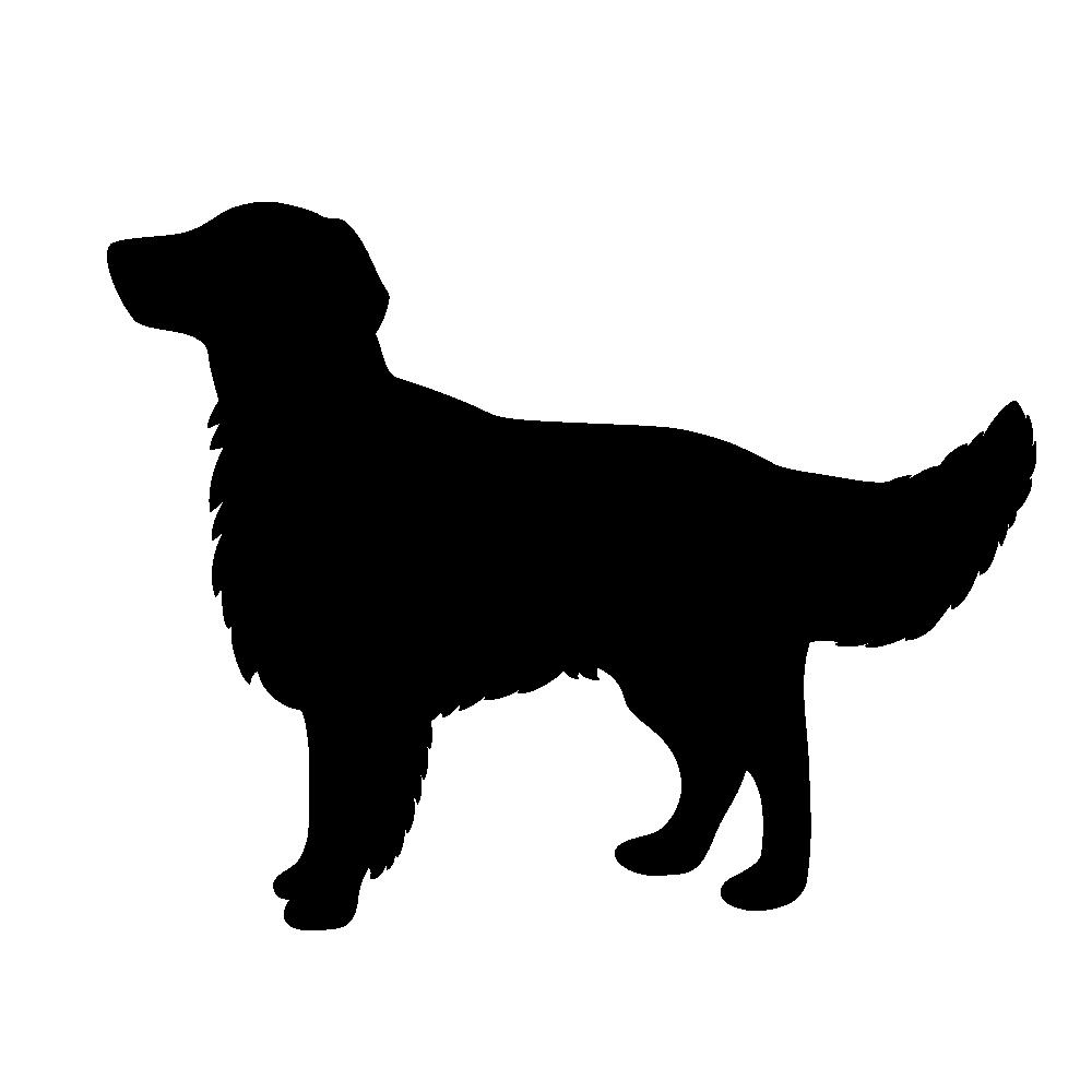 フラットコーテッドレトリバー