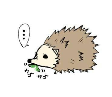 お食事ハリネズミ(はりねずみ)