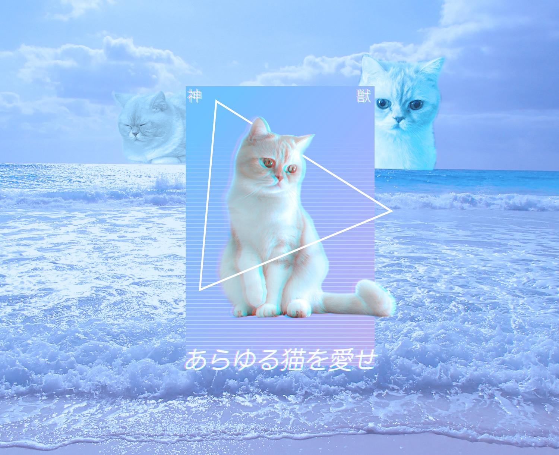 あらゆる猫を愛せ