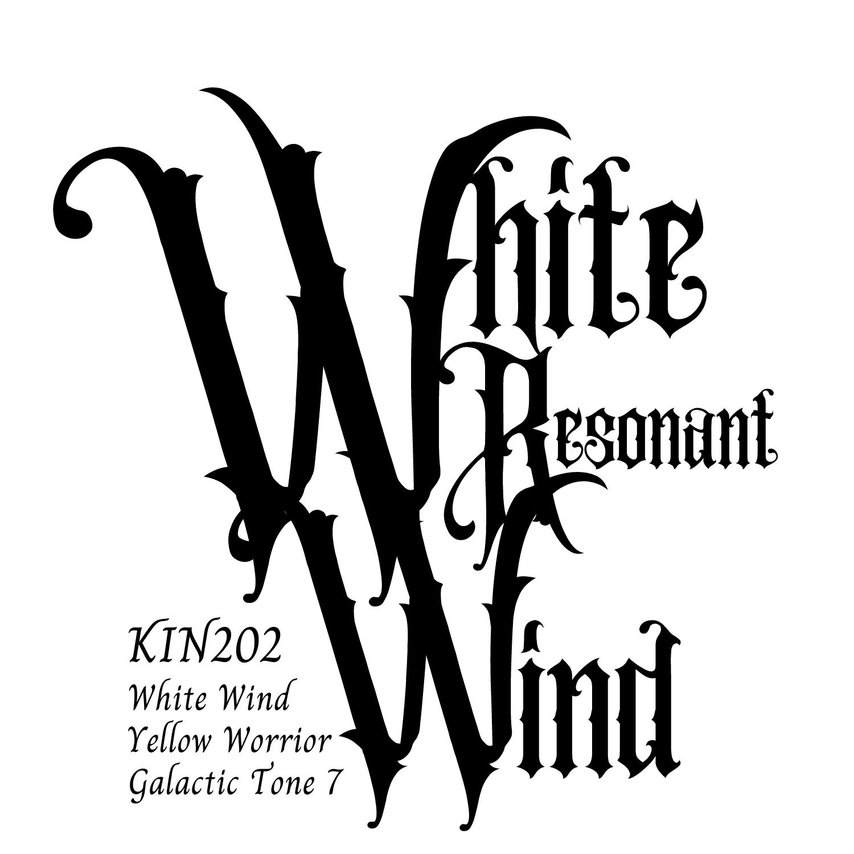 KIN202白い共振の風