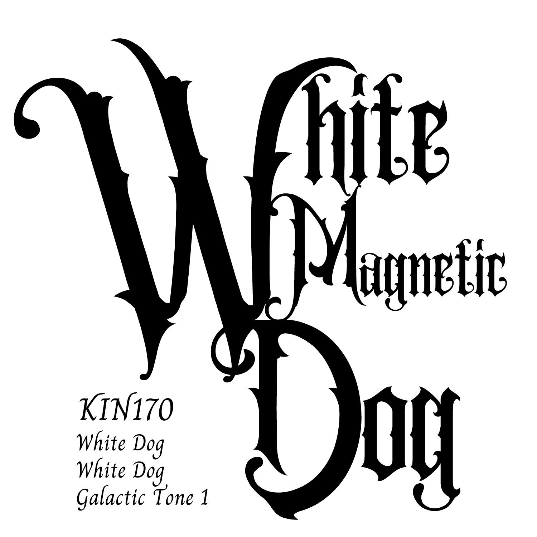 KIN170白い磁気の犬