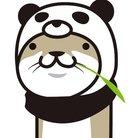カワウソぱんだ ( nihonpanda )