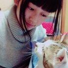 やまひつじ ( CAT_MAMAMANIA )