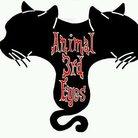 Animal 3rd Eyes ( animal_3rd_eyes )