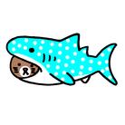 サメと猫のお店 ( saku2cat )
