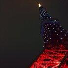 亀 亀 ( kame_otn )