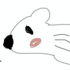 BerryKinoko ( hangover20xx )