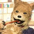 エホンオオカミの雑貨屋さん ( ehon_wolf )
