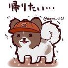 める ( meru_ui21 )
