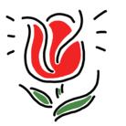tulip_love