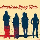 American Long Hair ( ameron_official )
