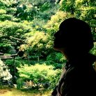 琥珀色に咲く花 ( SAYOKOHAKU )