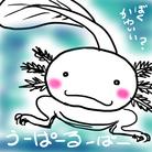 ゆき ( tiaki_ )