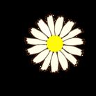 aoyansorayan