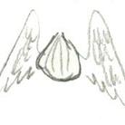たまねぎ天使 ( tamanegitensi )
