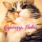 cyassy Labo. ( cyassyLabo )