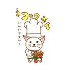 ネコックさん ( necook_san )