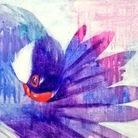 kadoBIRD ( kadomatsu )