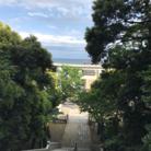 ノラうさきゅん☆ ( Norausaaa )