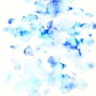 青い春 ( aoharu )