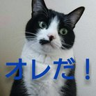 ヨメガスキー ( yomega_suki )