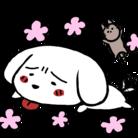 みみぴい ( MamedaifukuM )