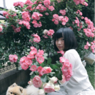 小物語-KoMoNoGaTaRi- ( 0v0haruka )