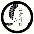 コケイロ ( kokeiro_yo2 )