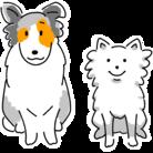 DOG STUDIO ( zoozoozoo )