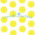 LEMON*LEMON*TETRA ( ll-tetra )
