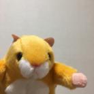 いしかわ ゆめ ISHIKAWA YUME 🎒 ( kyouretunaomaru )