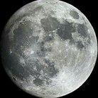 満月くん ( unkoara )