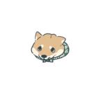 ときわ  いと ( Shisho_ )