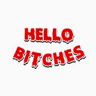 HELLO BITCHES ( hellobitches_21 )