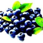 ブルーベリーフレーバー ( blueberryflav )